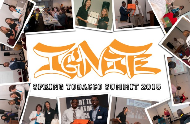 IGNITE SPRING SUMMIT 2015
